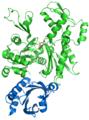 Profilin actin complex.png