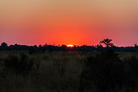 Puesta de sol, delta del Okavango, Botsuana, 2018-07-31, DD 20.jpg