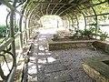 Putrajaya's Botanical Garden 17.jpg