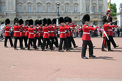 Queens.guard.buck.palace.arp.jpg
