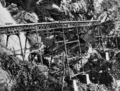 Queensland State Archives 3384 Building Stoney Creek Bridge for the Cairns to Kuranda Railway 1890.png