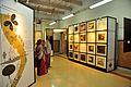 Rabindranather Bigyan Bhabna - Exhibition - Jorasanko Thakur Bari - Kolkata 2015-08-11 1988.JPG