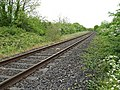 Railway Line - geograph.org.uk - 1320906.jpg