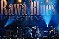 Rawa Blues Festival Terraplane 009.jpg