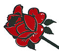 Red rose 02.jpg