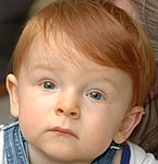 Redheaded child mesmerized 2.jpg