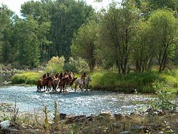 Reenactment on Lemhi River Nez Perce National Historic Trail (23723417842).jpg