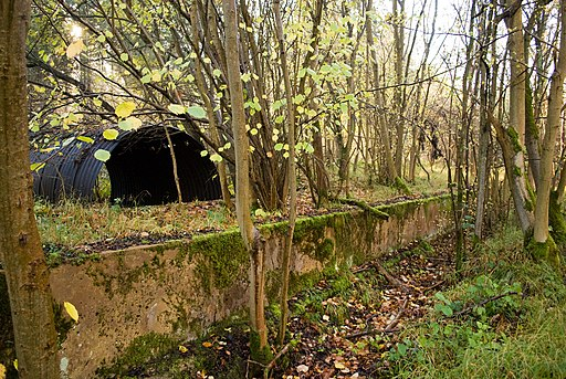 Remains of WWII Railway Workings - geograph.org.uk - 2161201