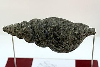 Serpentine Triton from Malia