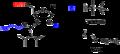 Ribonucleoside phosphoramidites.png