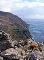 Rivage de l'île de l'Est, vu d'un sommet - panoramio.jpg