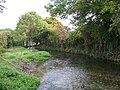 River Ebble - geograph.org.uk - 578220.jpg