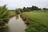 River Evenlode.jpg
