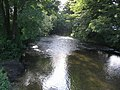 River Frome - geograph.org.uk - 190408.jpg