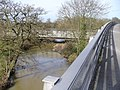 River Mole at Stoke d'Abernon Bridge - geograph.org.uk - 676490.jpg