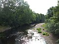 River Wharfe from Linton Bridge - geograph.org.uk - 212586.jpg