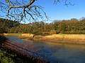 River Wye at Tintern Abbey - geograph.org.uk - 337129.jpg