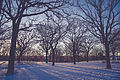 Riverside Park, Saint Cloud, Minnesota - Winter (24138428175).jpg