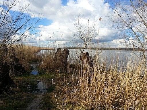Rivier de Amer bij Lage-Zwaluwe
