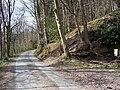 Road to Bryn - geograph.org.uk - 398220.jpg