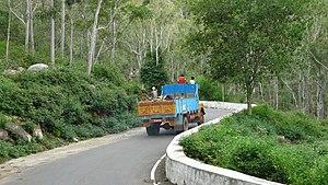 English: Road to leading to Yelagiri