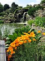 Rock Garden at Kew - geograph.org.uk - 444723.jpg