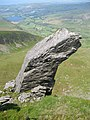 Rock feature on the ridge - geograph.org.uk - 690252.jpg