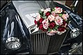 Roses for a Rolls Royce in Singapore-1 (41247405054).jpg