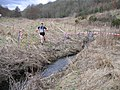 Runner in wooded valley - geograph.org.uk - 203937.jpg