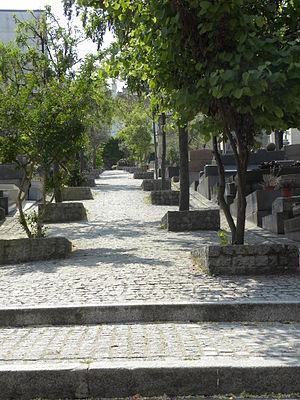 Saint-Vincent Cemetery - Image: SVC Main road