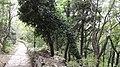 San Marino - panoramio (18).jpg