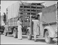 San Pedro, California. Trucks were jammed high with suitcases, blankets, household equipment, garde . . . - NARA - 536778.tif