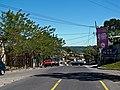 San Rafael Cedros 2011.jpg