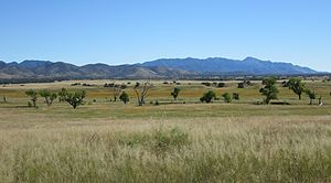 San Rafael Valley - The San Rafael Valley, facing east toward the Canelo Hills and the Huachuca Mountains.