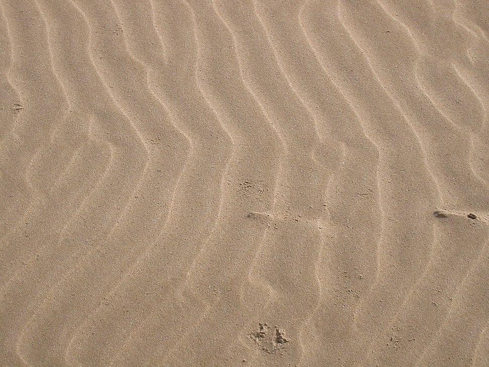 Sand 2003-01-25