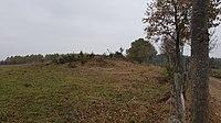 Sankt Vith-Hügelgräber Schinkelsknopf (3).jpg