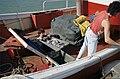 Scènes de retour de pêche - Déchargement du poisson (6).jpg