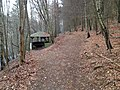 Schutzhütte im Niestetal.JPG