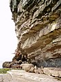 Sedimentary Rocks of Great Orme Llandudno Wales.jpg