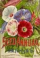 Seed annual, 1899 (16443377885).jpg