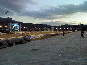 LetsRun Park Seoul - Image: Seoul Racecourse November Dawn