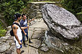 Shrine to the Toad, Ciudad Perdida (5479985125).jpg