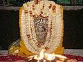 Shyam Vatika 08.JPG