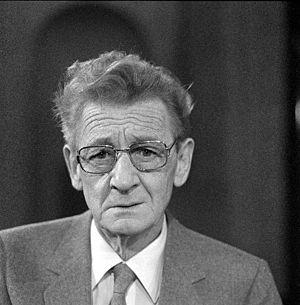 Simon Carmiggelt - Carmiggelt in 1982.