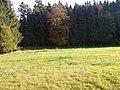 Slatiny - hranice - panoramio (33).jpg