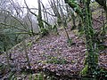 Sloughan Glen - geograph.org.uk - 1176775.jpg