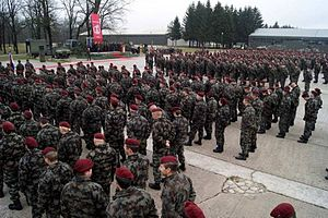 1st Brigade (Slovenian Armed Forces) - 1st Brigade in 2011