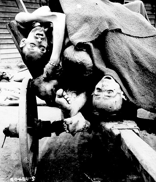 Some of the bodies being removed by German civilians for decent burial at Gusen concentration camp after its liberation. - Mauthausen-Gusen concentration camp