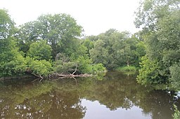 South Sandy Creek at Lakeview WMA.jpg