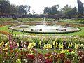 Spectacular garden.jpg